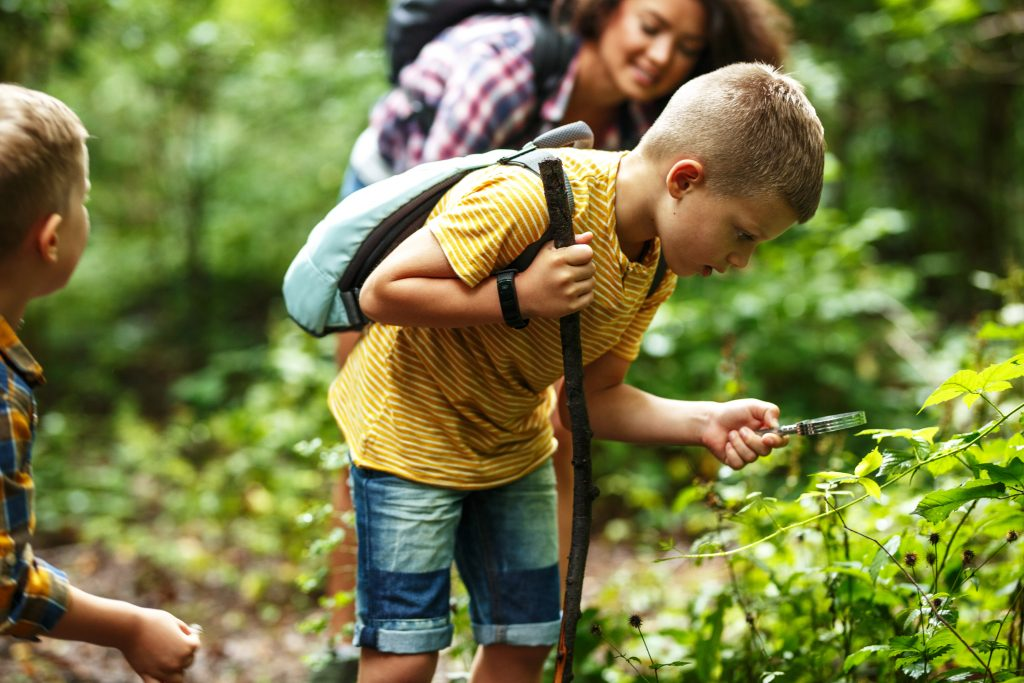 Mother and her little sons hiking trough forest Boy using magnifying glass and looking at insects