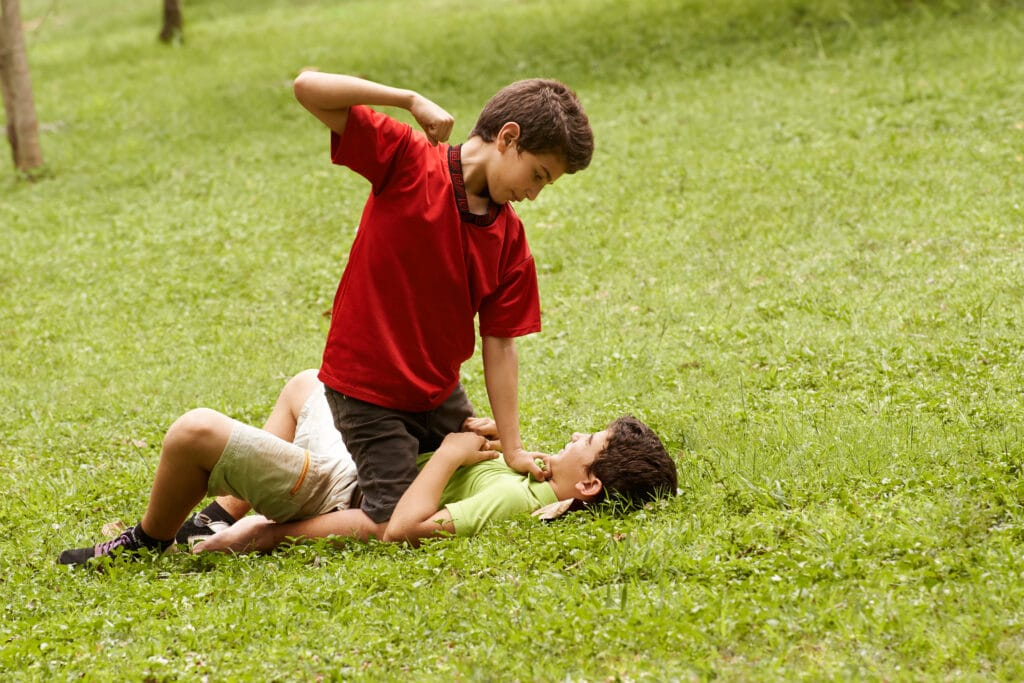 Two young brothers fighting and hitting on grass in park, with older boy sitting over the younger