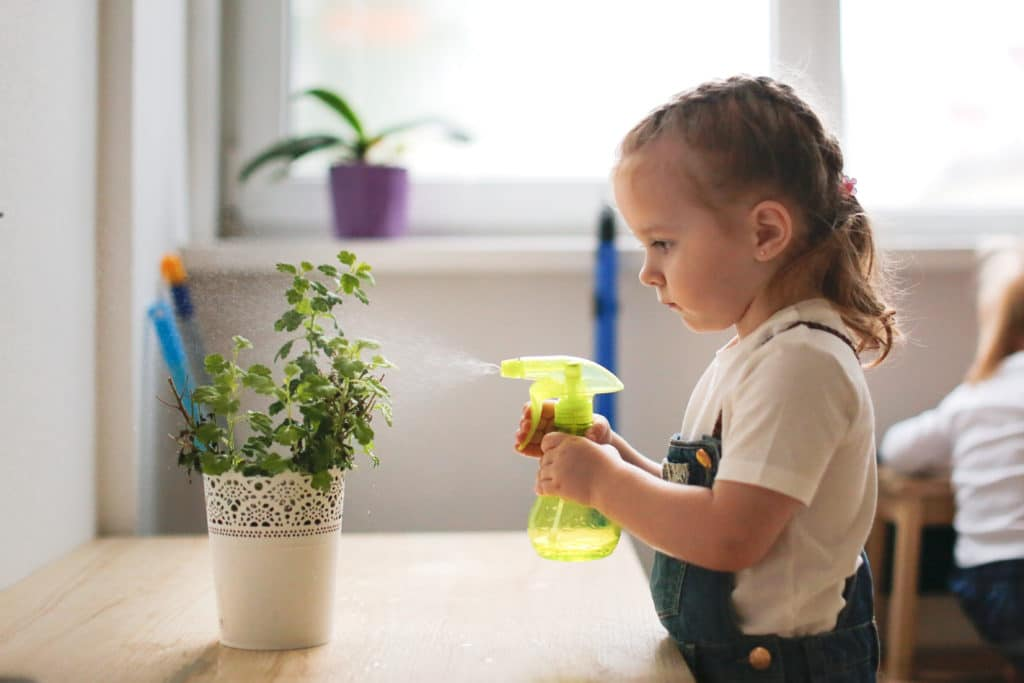 Little girl watering a plant with a spray bottle